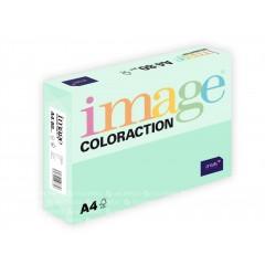 Image Coloraction A4/80gr Jungle Pale Green (617061)