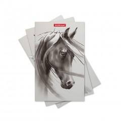 Märkmik klamberköites Wild Horse, 112x181mm, 32lehte, punktiir