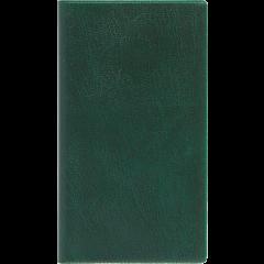 Ruuduline märkmik 76x134 mm, 60 lehte, spiraalköide, plastkaaned – roheline