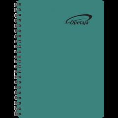 Õpetaja raamat, õhukesed plastkaaned – roheline
