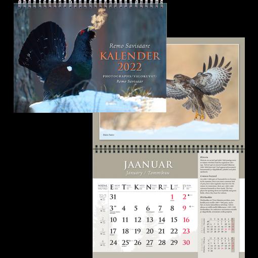 Remo Savisaare (linnud, loomad), 297x420mm, spiraalköide